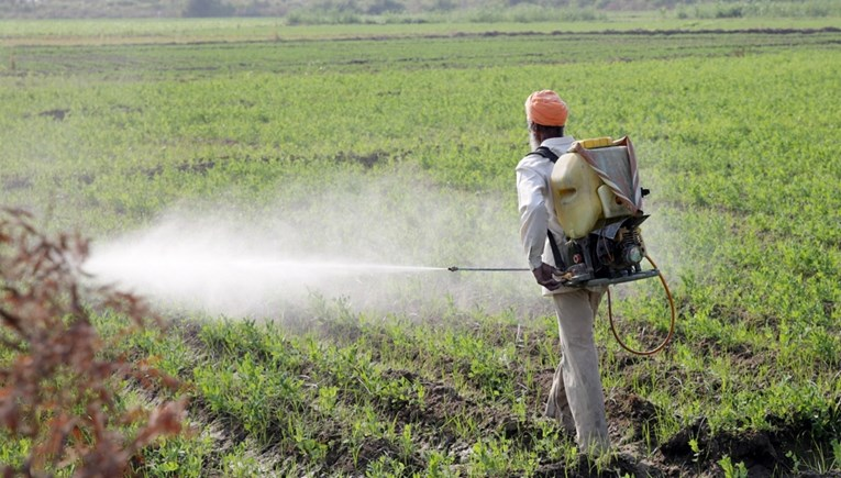 Switzerland will hold a referendum on banning synthetic pesticides