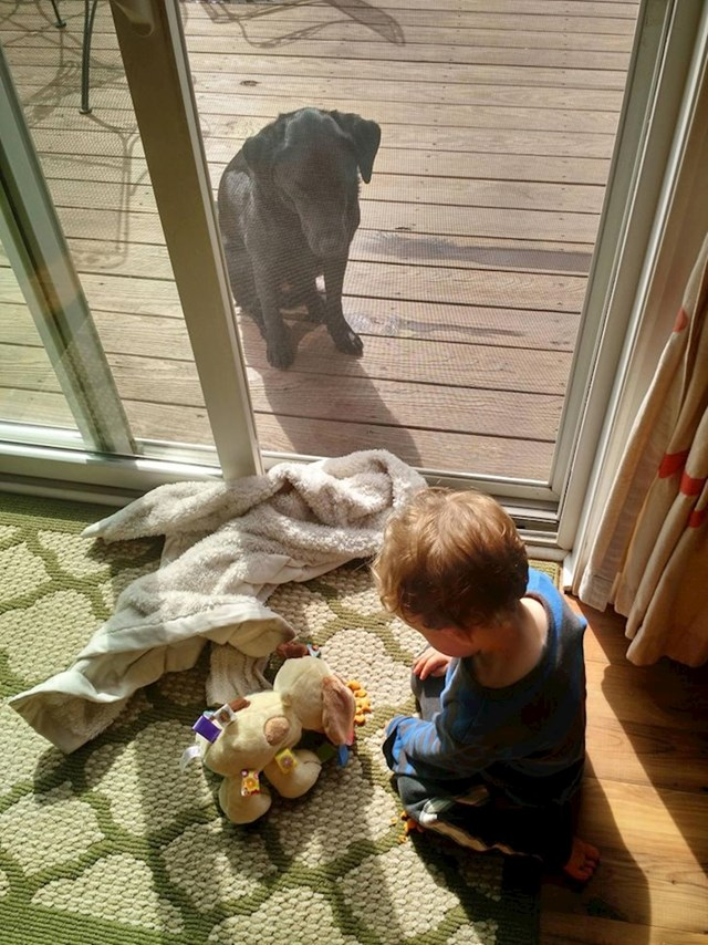 """Moj sin hrani plišance dok pravi ljubimac ljuto promatra"""