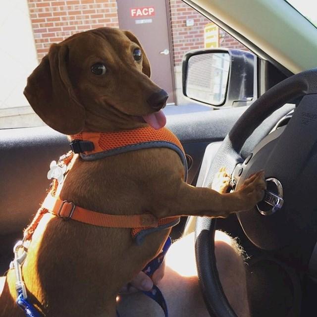 I on bi vozio!