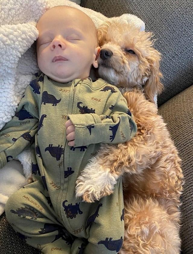 Dvije bebe