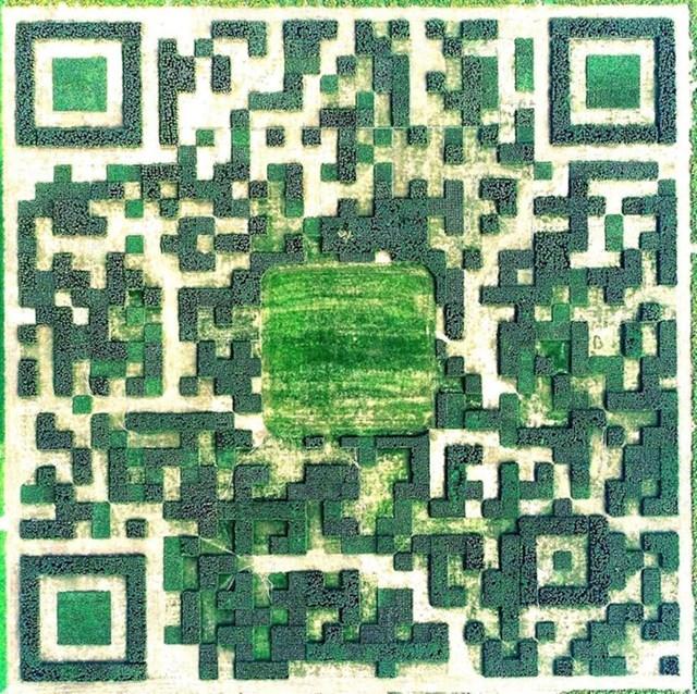 Vrt u obliku QR koda