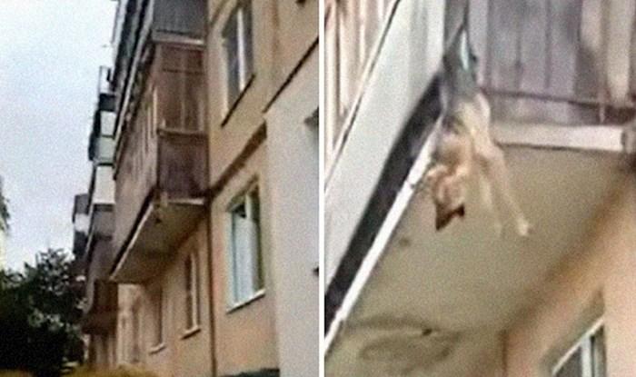 Pas je preko balkona pokušao pobjeći od vlasnika zlostavljača, susjedi mu spasili život