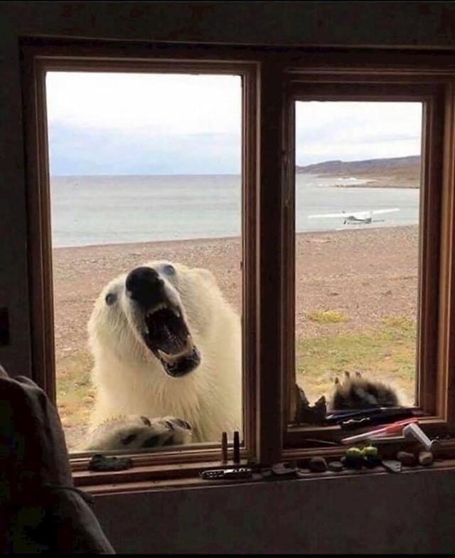 """""""Apartman na Aljasci s pogledom"""""""