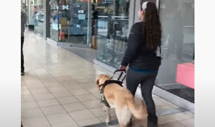 Svaki put kada je u trgovačkom centru, ovaj pas vodič zavara vlasnicu i odvede ju u jednu trgovinu