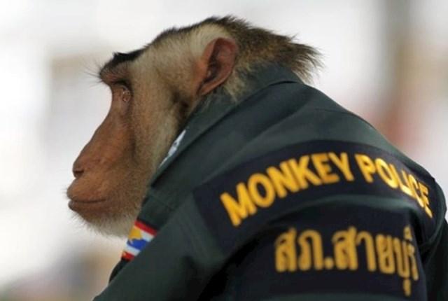 Tajland je siguran pored ovakvih policajaca