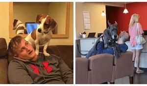 20plus fotki koje će novopečenim vlasnicima psa objasniti kako izgleda život s novim članom obitelji