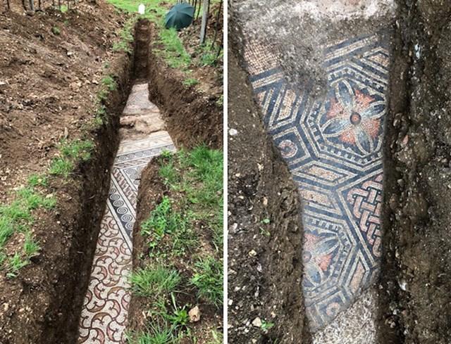 Pronađeno ispod vinograda u Italiji- ostaci mozaika nekadašnje vile