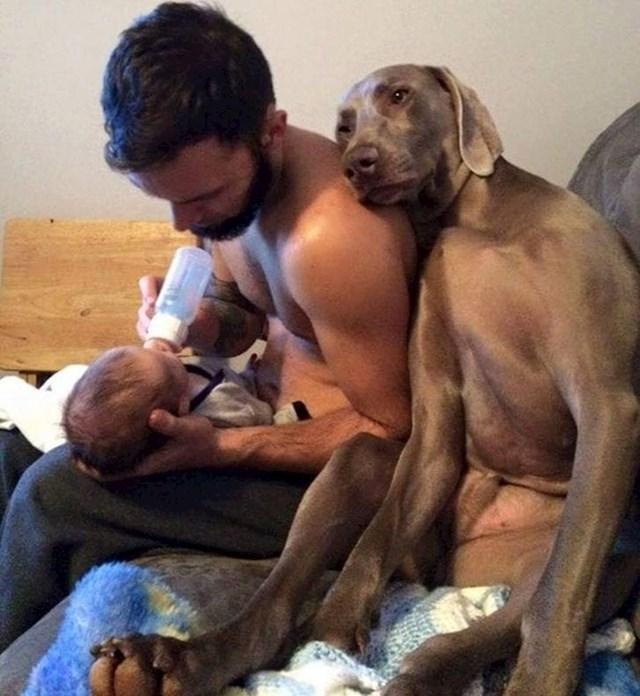 Beba mu je oduzela puno pažnje, ali on i dalje strpljivo čeka svoje vrijeme i ne buni se