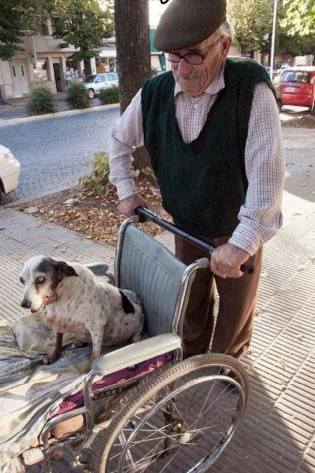 Starac svaki dan ovako izvodi svog ljubimca koji još uvijek voli šetnje iako više ne može dugo šetati