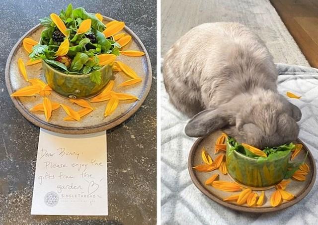 """""""Vraćali smo se od veterinara i bio sam gladan, a nisam htio ostaviti zeca samog. Zvao sam restoran da pitam smijem li doći na ručak sa zecom. Ovako su nas dočekali"""""""