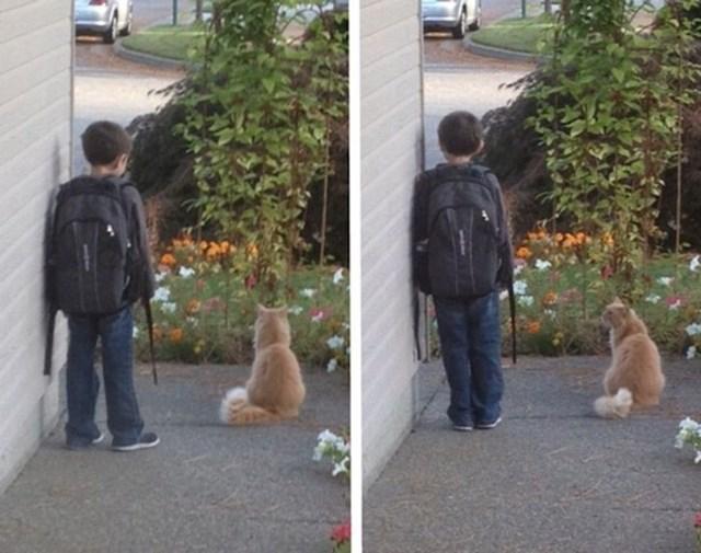 5. Svako jutro zajedno čekaju školski autobus