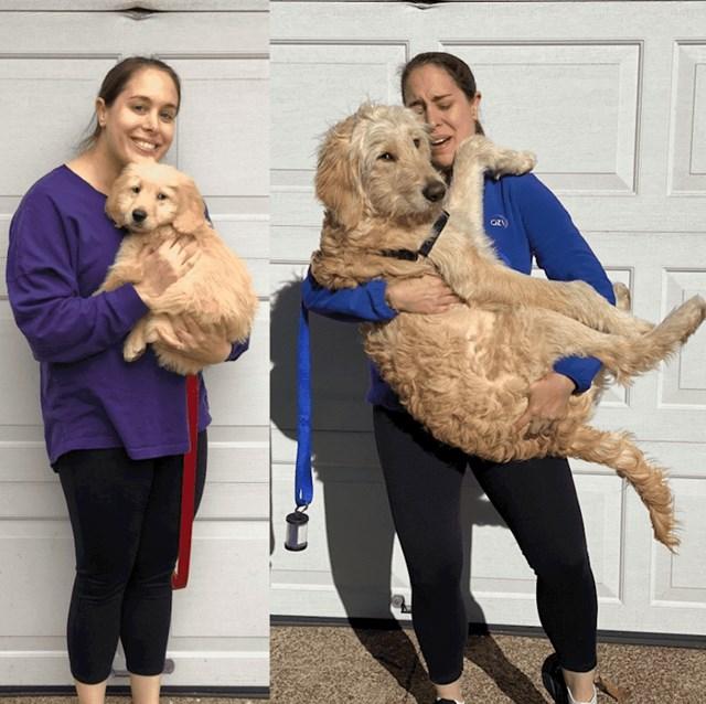 30 kila poslije, i dalje će žicati da ga držite kao kad je bio malo štene