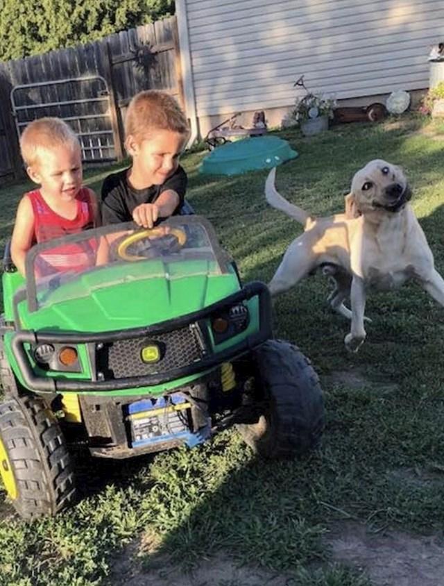 """Sestrin pas se izbezumi kad se igra s mojom djecom"""