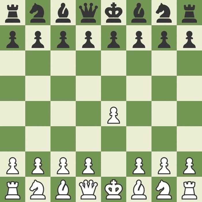 Partija šaha