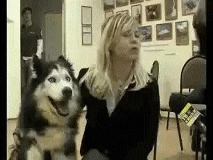 Kad je prvi put stao pred kameru, pas je bio oduševljen
