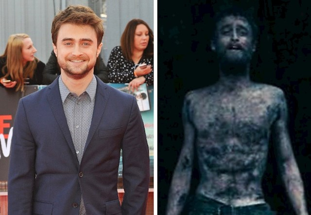 Daniel Radcliffe - Jungle