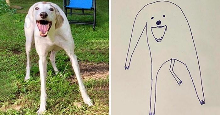 Osoba je bezuspješno pokušala nacrtati svog psa, no onda su njeni radovi postali hit na internetu