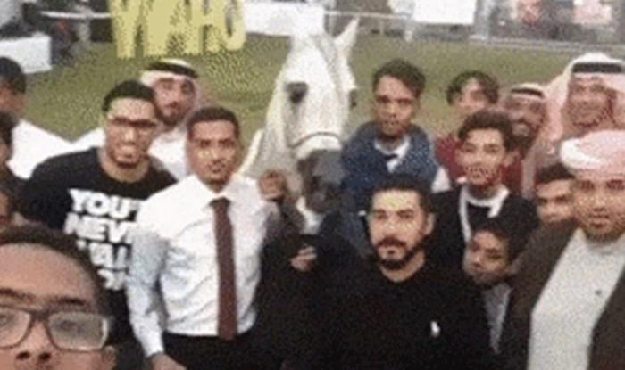Ekipa je htjela slikati selfie s konjem, ali onda su napravili grešku koja im nije trebala
