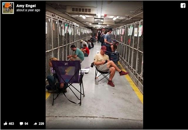 Ovi ljudi su propustili vatromet kako bi mogli tješiti uplašene pse u skloništu.