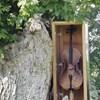 U prirodi su postavili drveni sanduk s glazbenim instrumentom, a onda se dogodilo nešto zanimljivo