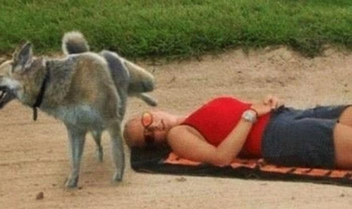 Smiješne slike životinja i ljudi koji su se u krivo vrijeme našli na krivom mjestu