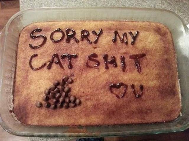 Isprika nakon što se cimerici mačka pokakala tamo gdje ne bi smjela...