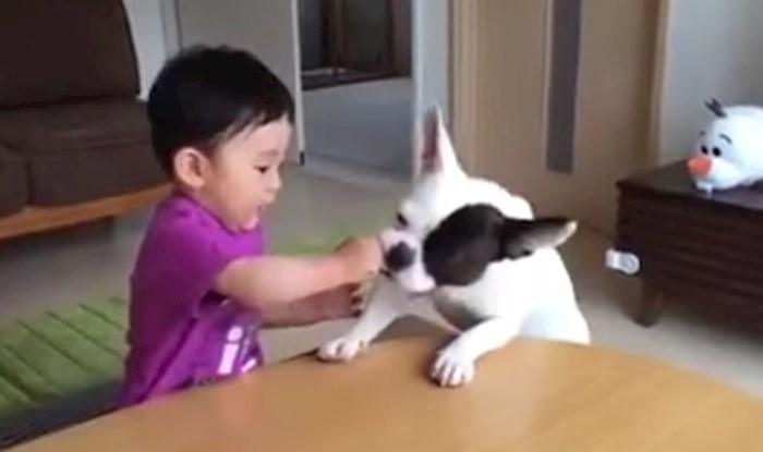 VIDEO Pas je ukrao keksić i rasplakao dječaka, no onda se dogodilo nešto smiješno što ga je zbunilo