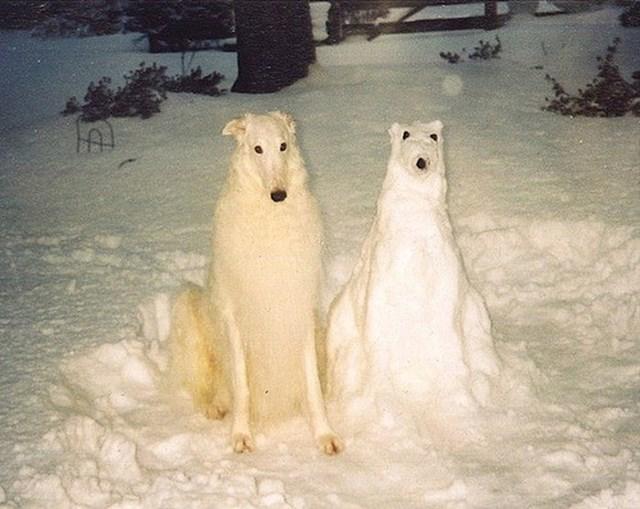 """""""Naš pas je bio oduševljen."""""""