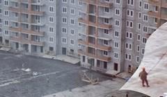 Stanar je uvećao fotku i otkrio što su građevinski radnici zaprarvo radili na poslu