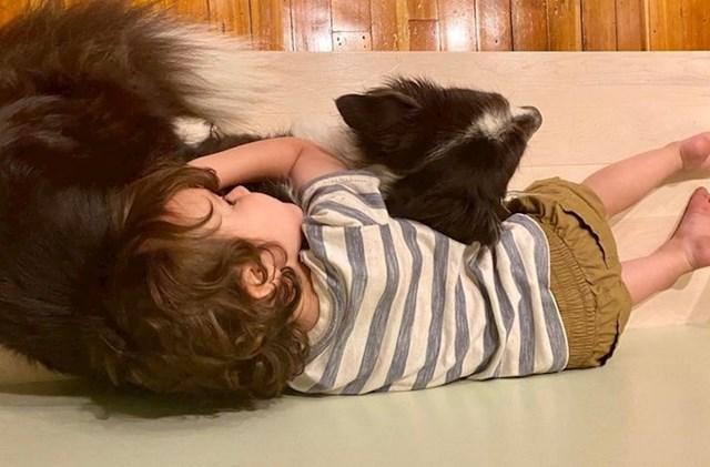 """""""Naš pas se jako boji oluja i grmljavine. Naš sinčić ga je htio smiriti."""""""