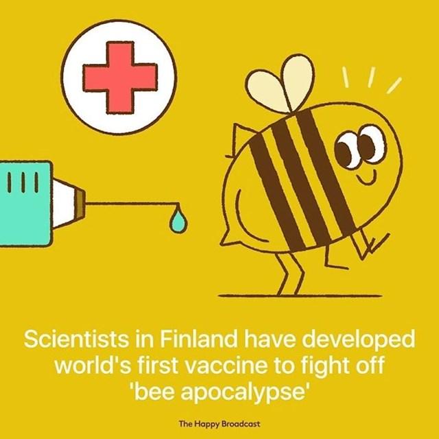 """Finski znanstvenici su napravili prvo cjepivo protiv """"pčelinje apokalipse""""."""