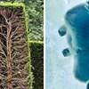 15 običnih stvari prikazanih na jedan sasvim neobičan način