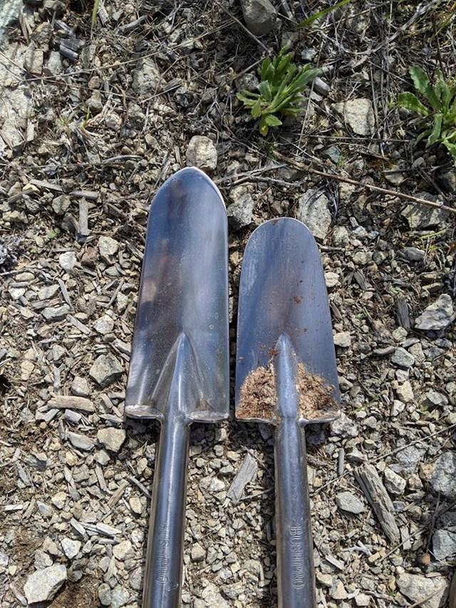 Što se dogodi kad s istom lopatom posadiš 90 tisuća stabala... (lijevo je nova lopata, a desno ista takva, ali korištena)