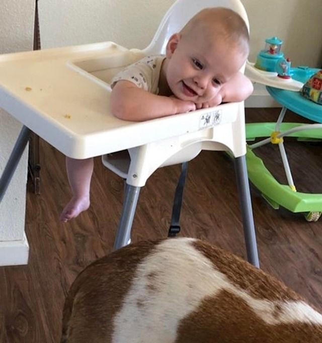 """""""Način na koji je naša beba gledala psa je presladak!"""""""