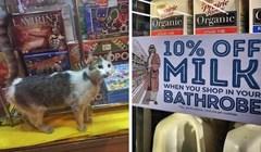 Muzeji nemaju nikakve šanse protiv ovih supermarketa, pogledajte što su ljudi našli u njima