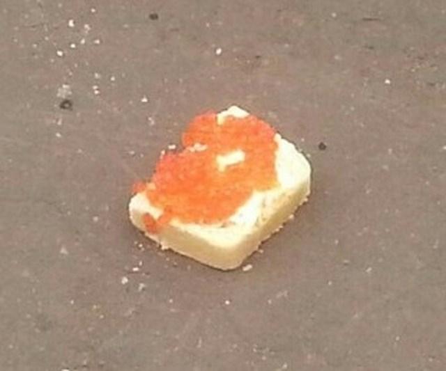 """""""Hodao sam ulicom i odjednom ugledao ovo. Netko je odustao od kruha s kavijarom."""""""