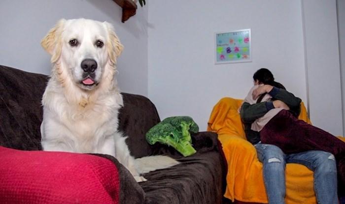 """VIDEO """"Što se to događa s našim psom?"""" Zagrlio je ženu pa snimio slatku reakciju ljubimca"""