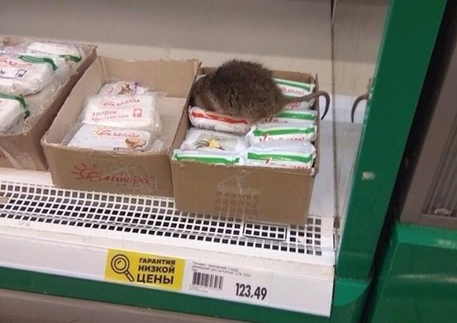 AKCIJA: Kupi sir i dobit ćeš meso besplatno!
