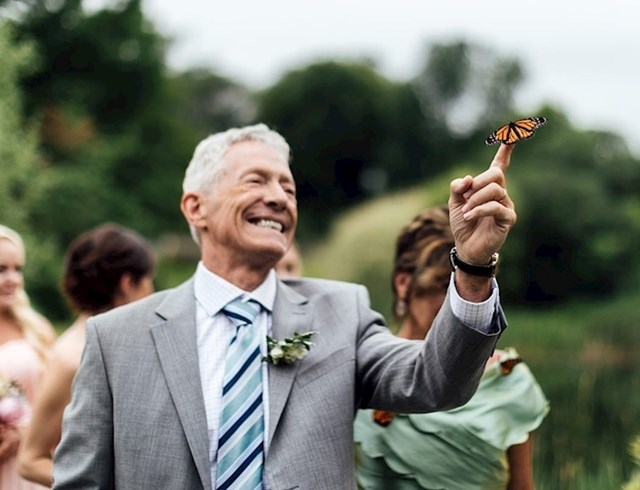 Tijekom jednog vjenčanja pušteni su leptiri u čast mladenkinoj preminuloj sestri, no oni nisu htjeli odletjeti pa su sletjeli na ramena gostiju i ostali tamo do kraja obreda.