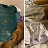 Pas joj je izgrizao putovnicu i spriječio put u zaraženi grad Wuhan