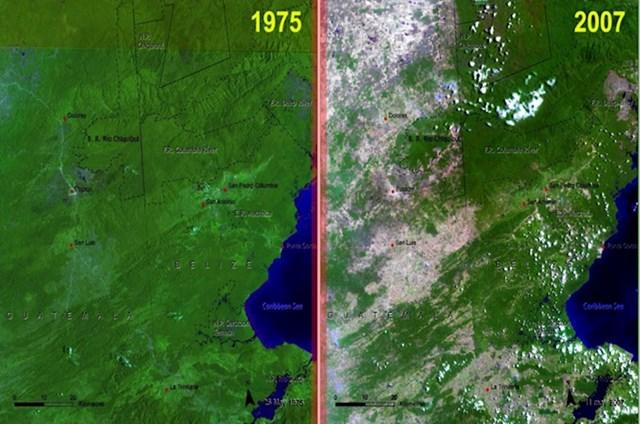Rezultat sječe šuma u Guatemali