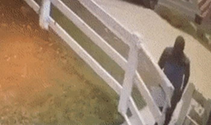 Čovjek je htio dostaviti paket, a onda je ugledao nešto zbog čega je počeo bježati