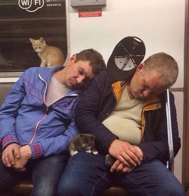 Laku noć svima!