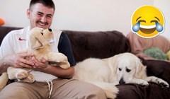 Počeo je maziti plišanog psa pa snimio simpatičnu reakciju svog ljubomornog ljubimca
