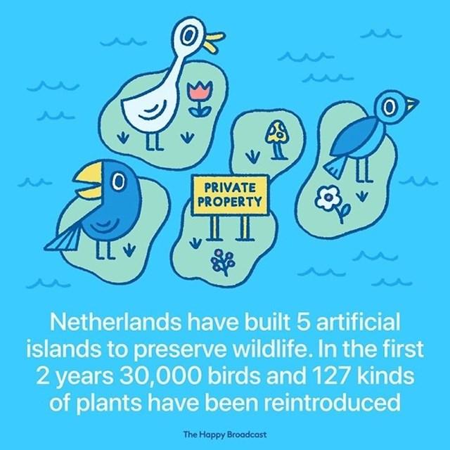 Nizozemska je izgradila 5 umjetnih otoka kako bi očuvali divljinu. U prve dvije godine 30 tisuća ptica i 127 biljnih vrsta je reintroducirano.