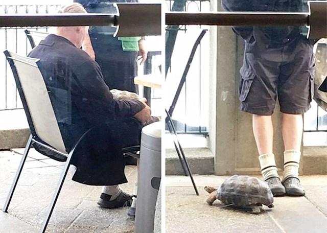 """""""Jednog dana je lik ušao u naš kafić i pitao jesu li životinje dozvoljene. Rekli smo da je, onda se vratio s kornjačom."""""""