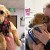 Netko je psiću zalijepio njušku i bacio ga s mosta, a onda je naišao muškarac i spasio mu život