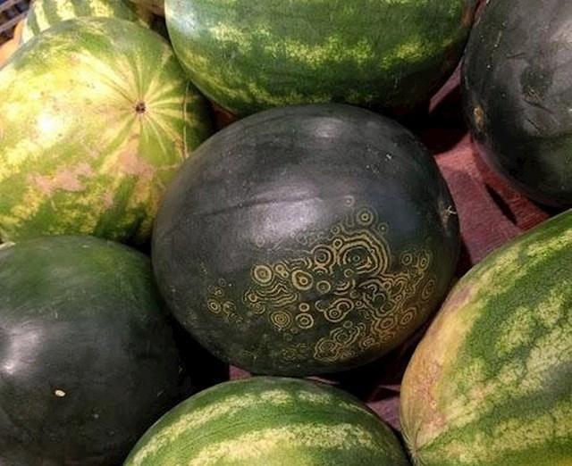 "Ovaj prekrasni ukras zapravo je ""zločin"" mozaik virusa lubenice."