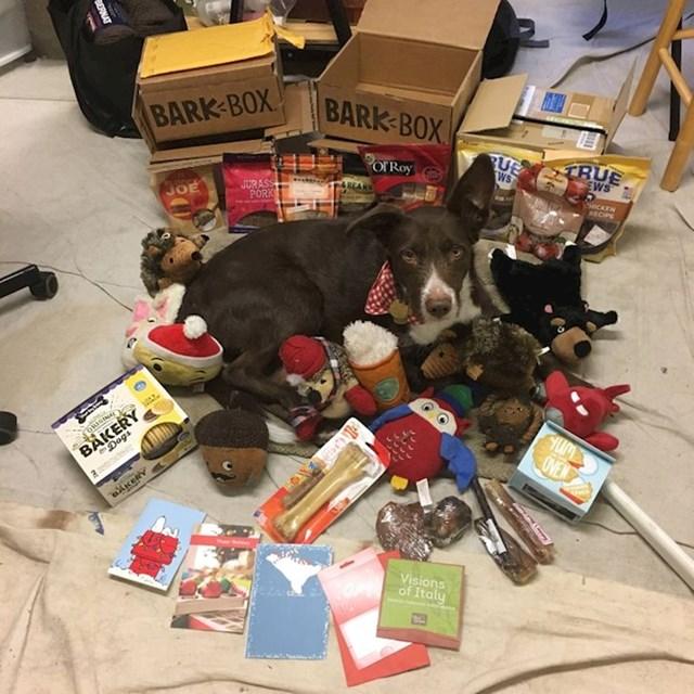 Terapijski pas ima bolesnu vlasnicu koja nema previše novca. Ljudi s interneta skupili su novac i kupili puno hrane, igračaka i poslastica za njega.