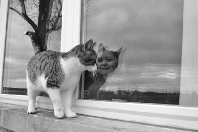 """""""Htjeli smo slikati  mačku, no onda se dogodilo nešto zanimljivo..."""""""